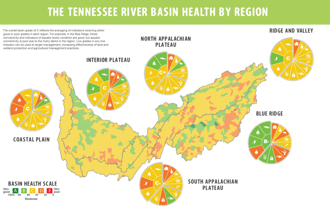 Tennessee River Basin Report Card