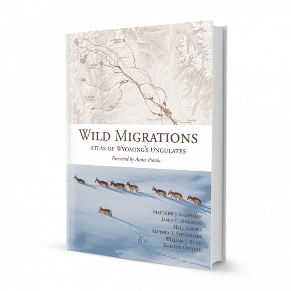 Wild Migrations Book Cover