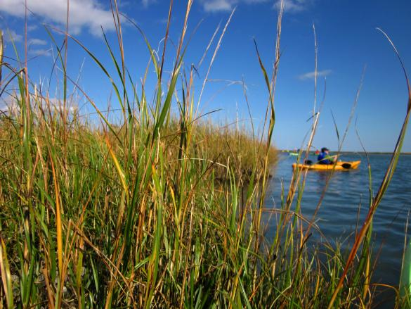 Kayak in Chesapeake Bay