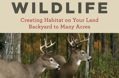 Make A Home For Wildlife Book Cover