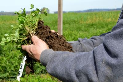 a demonstration of healthy soil practices