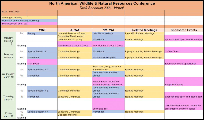 Draft schedule grid