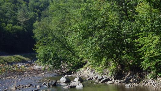 White River in Vermont