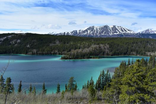 Yukon Territory Landscape